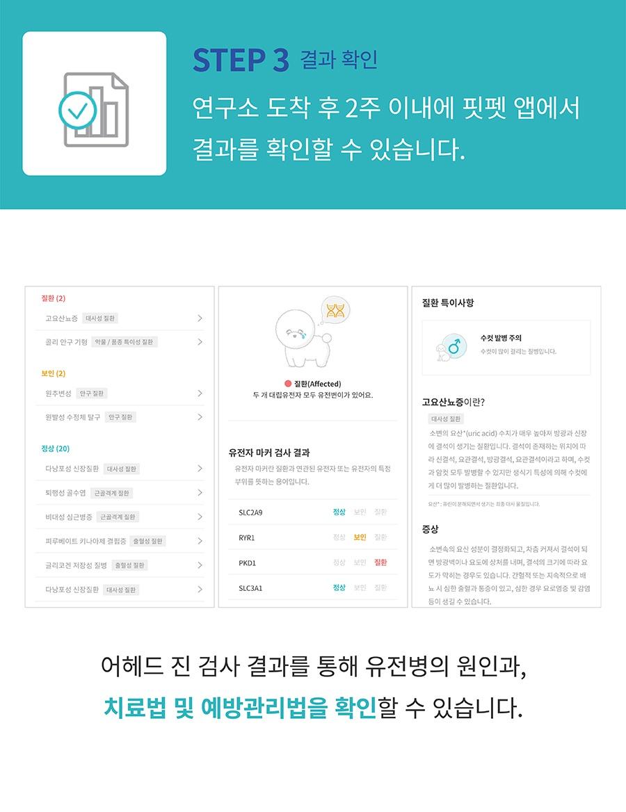 [특별세트] 어헤드진+어헤드-상품이미지-7