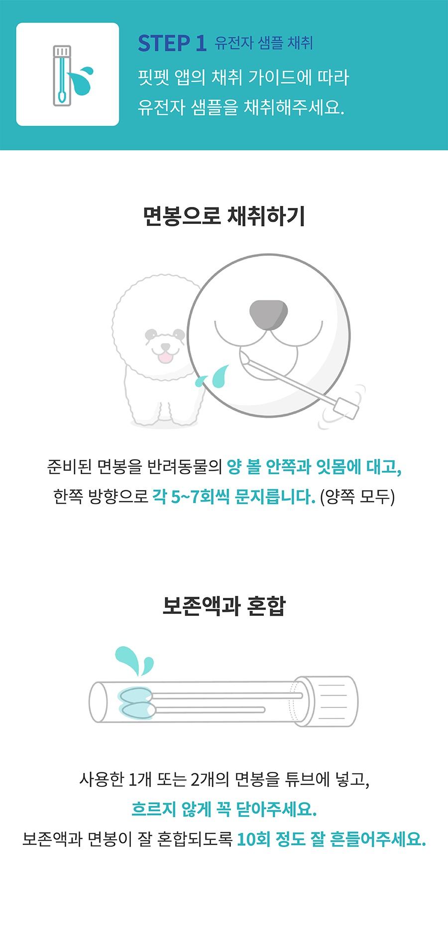 [특별세트] 어헤드진+어헤드-상품이미지-5